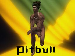 Pitbull Doghouse