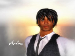 Arlow Bonetto