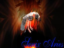 Senix Aries