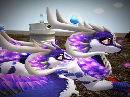 shayla2010 Resident's Profile Image