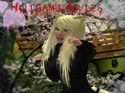 Huigami Aries