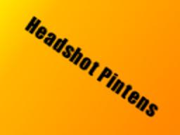 Headshot Pintens