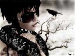 Ravenmyst Fall