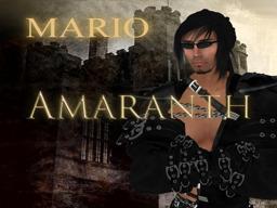 Mario31 Adder