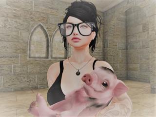 Zetahallstatt Resident profile image