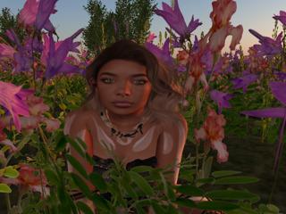 Kreszentia Waydelich profile image
