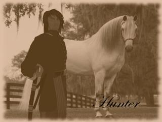 HunterHawkins Swashbuckler