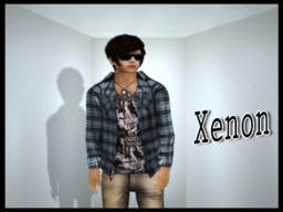 Xenon Windlow