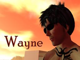 Wayne Babii