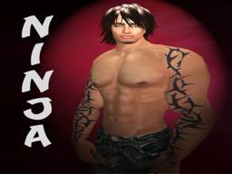 Ninja Wardark