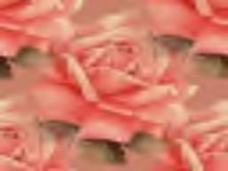 petula Ruby