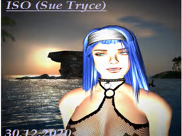 Sue Tryce's Profile Image