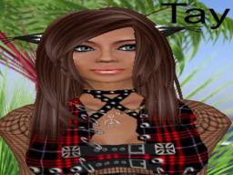 TayTay Pinklady