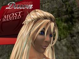 Dawn Woods