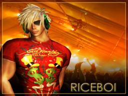riceboi Mixemup