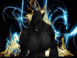 steven Marenwolf