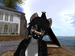 Lyraya Silvercloud's Profile Image