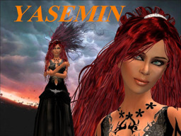 Yasemin Diesel