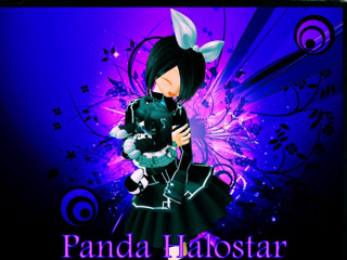Panda Halostar
