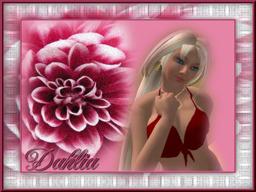 Dahlia Trimble