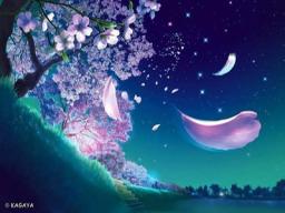 Sakura Zenfold
