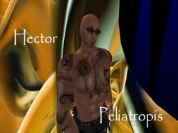 Hector Peliatropis