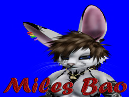Miles Bao