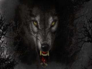 shikk Resident profile image