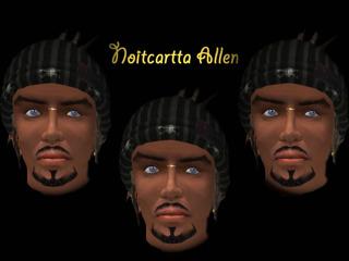 Noitcartta Allen