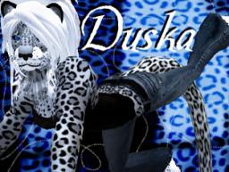 Duska Donburi