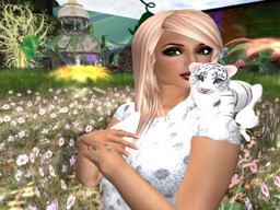 Skye Fairywren