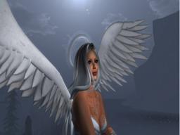 cagla Vaher's Profile Image