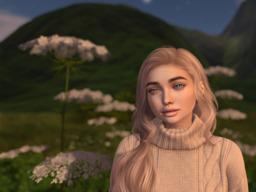 Kitten Nova's Profile Image