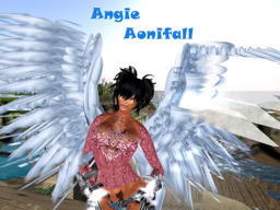Angie Aonifall