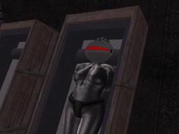 Mistress Chrome