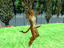 Cheetah Hammerer