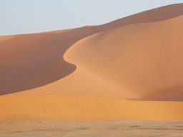 sand Maven