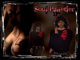 soul Palletier