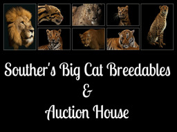 Southers Big Cat Breedables and Auction House