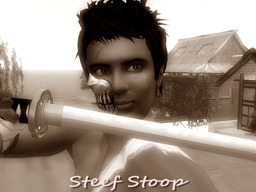 Steef Stoop