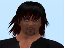 Brock Waverider